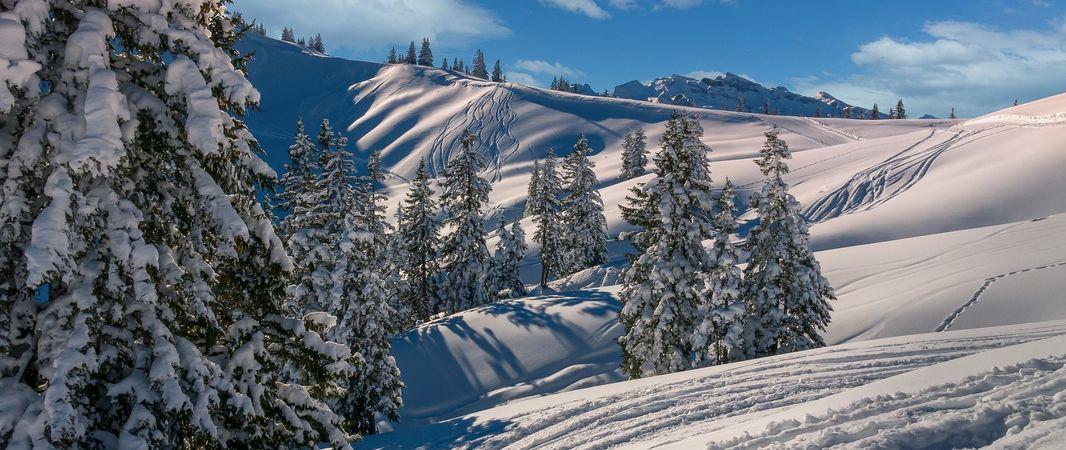 Stornobedingungen für die Wintersaison 2020/21